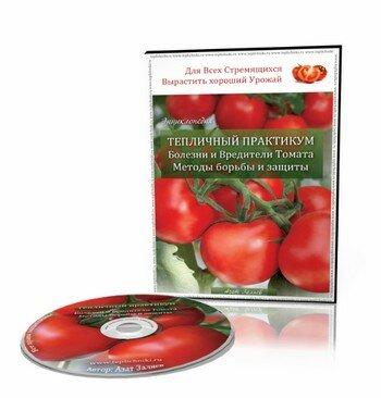 Видеокурс тепличный практикум_teplichnyiy-praktikum