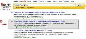 скриншот выдачи_ skrinshot-vyidachi